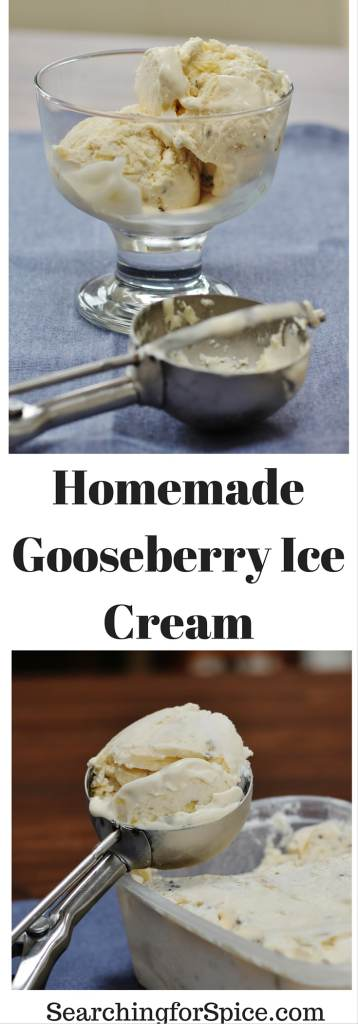 Homemade gooseberry ice cream