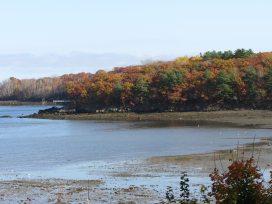 Harbor in Glen Cove, Maine