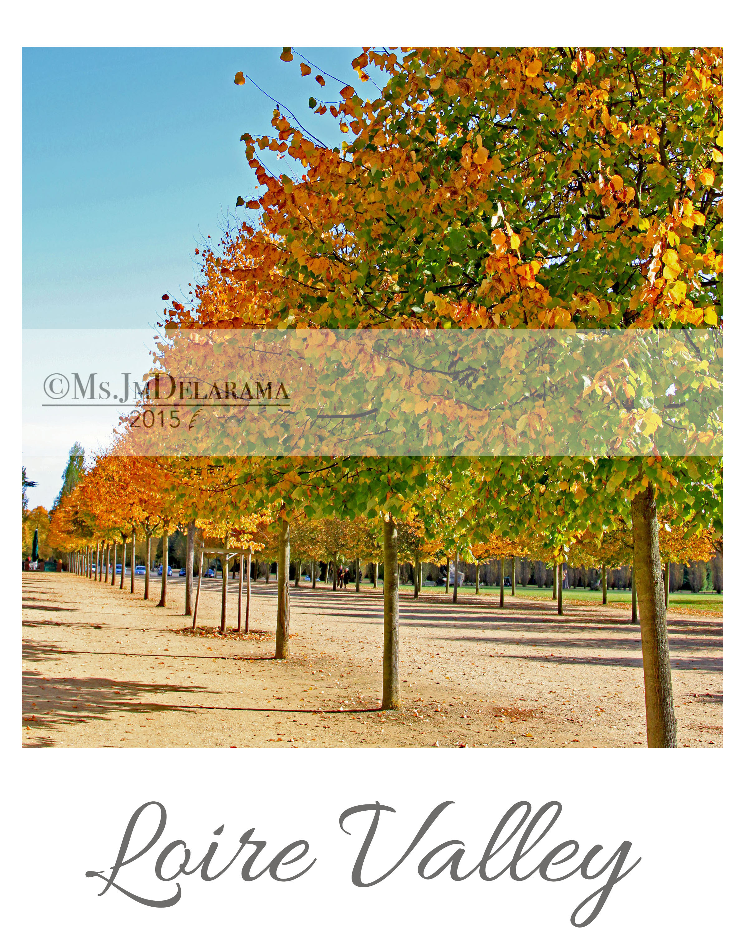 loire valley trees nature autumn seasons photography inspiration