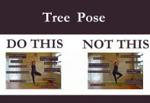 Vrksasana-tree-yoga-pose-main