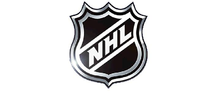 NHL logo banner