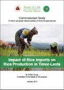 Impact of rice imports