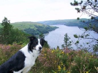 Sia poserar framför utsikten i mitten av Wales - bedövande vackert var det!