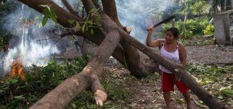 México: Seguros cubrirán daños a la agricultura que dejó el huracán Patricia