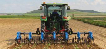 Fedeagro: Gobierno aún no se pronuncia sobre plan para atender emergencia alimentaria