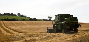 España: 3 millones en ayudas a la contratación de seguros agrarios