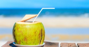 sehat alami - Coconut drink