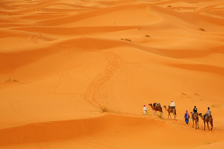モロッコ サハラ砂漠