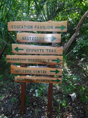Visiting the Leon Levy Native Plant Preserve, Bahamas