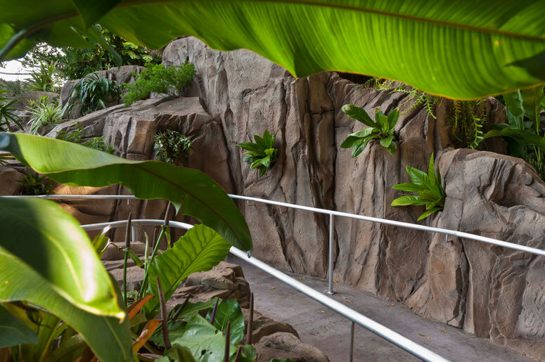 http://i2.wp.com/selby.org/wp-content/uploads/epiphyte-canyon.jpg?fit=775%2C515