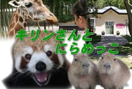 GWは動物園に! 「動物ふれあい施設」人気TOP10【関東】