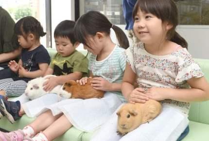 上野動物園、子ども向け施設をリニューアル! 展示&体験が充実