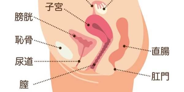膣も老化する!? たるみや乾きを予防する膣ケア&会陰マッサージ