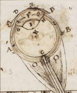 "Detail of the ocular anatomy in Thomas Hobbes' ""A Minute or First Draft of the Optiques"" (BL Harley MS 3360), f. 6r."