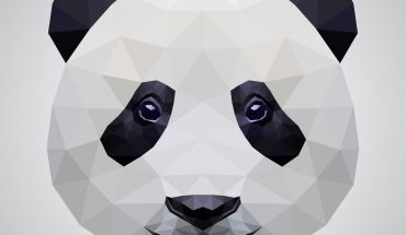 panda bonito seo