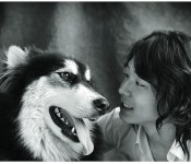 K-pop Idols And Their Pets