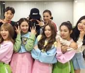 Highlights of K-pop Dream Concert 2015