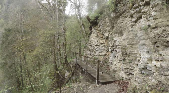 Durch die Wutachschlucht im Schwarzwald