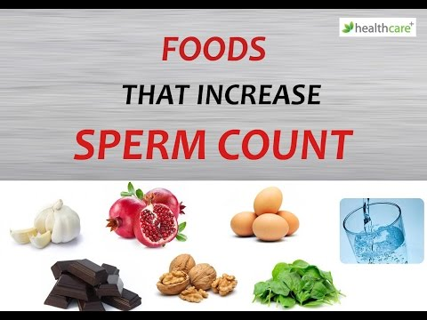 4 Common Foods That Increase Sperm Fertility