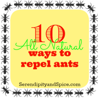 10 All Natural Ways to Repel Ants