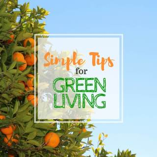 Simple Tips for Green Living