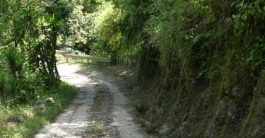 Parque Nacional Chirripo 4