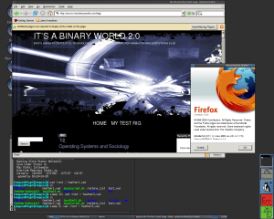 Feather Linux - Firefox 1.0