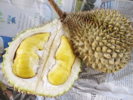 Singapore best local foods durian
