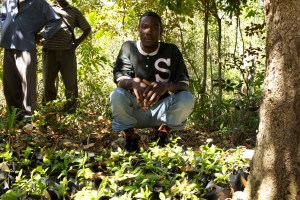 Robinson is a community member of Bois Jolie who has continued the cultivate coffee. He was proud to show us his nursery.