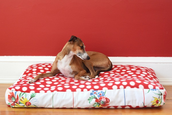 Tutorial: Doggy duvet bed