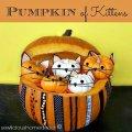 Pumpkin full of kittens tutorial