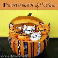 Pumpkin Full Of Kittens {halloween}