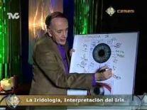 investigatie a hartii irisului in orele de curs