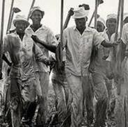 Young sharecroppers or field workers