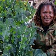 Kelly Carlisle poses amid healthy, wholesome collard greens growing on the Acta Non Verba Urban Farm at Tassaforanga Park in East Oakland. A veteran who discovered the therapeutic effect of gardening when returning from service in the U.S. Navy, she works with the Farmer Veteran Coalition to place unemployed veterans in agricultural jobs.