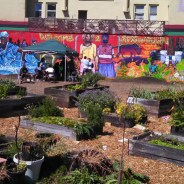 The Afrikatown mural and community garden