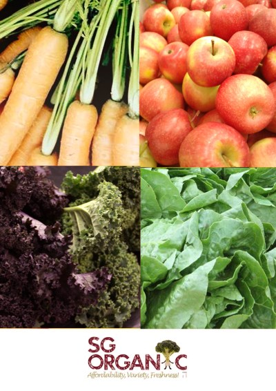amy neary, organic delivery, cancer care, breast cancer, organic produce, fresh fruits, immune, inflammation