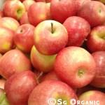 organic baby apple