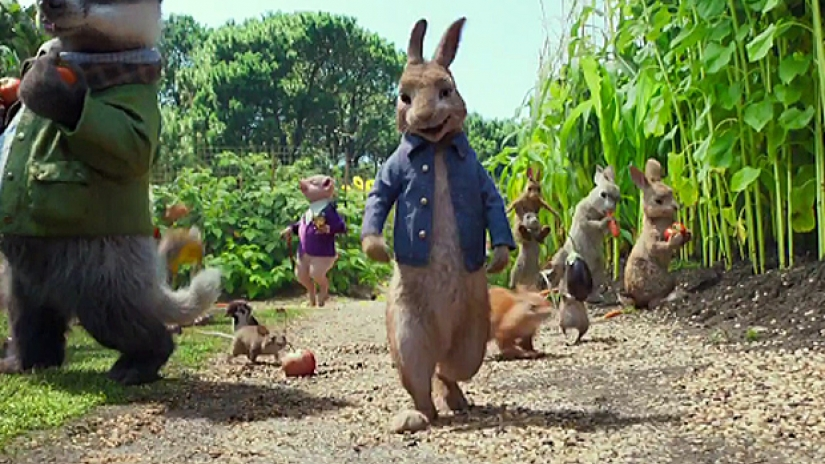 Peter Rabbit.,