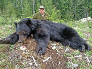 bear-trophies-12