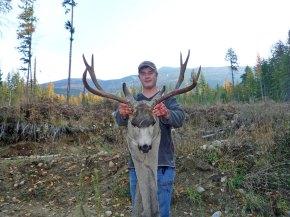 deer-trophies-35