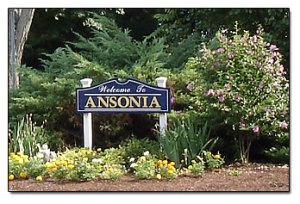 ansonia picture