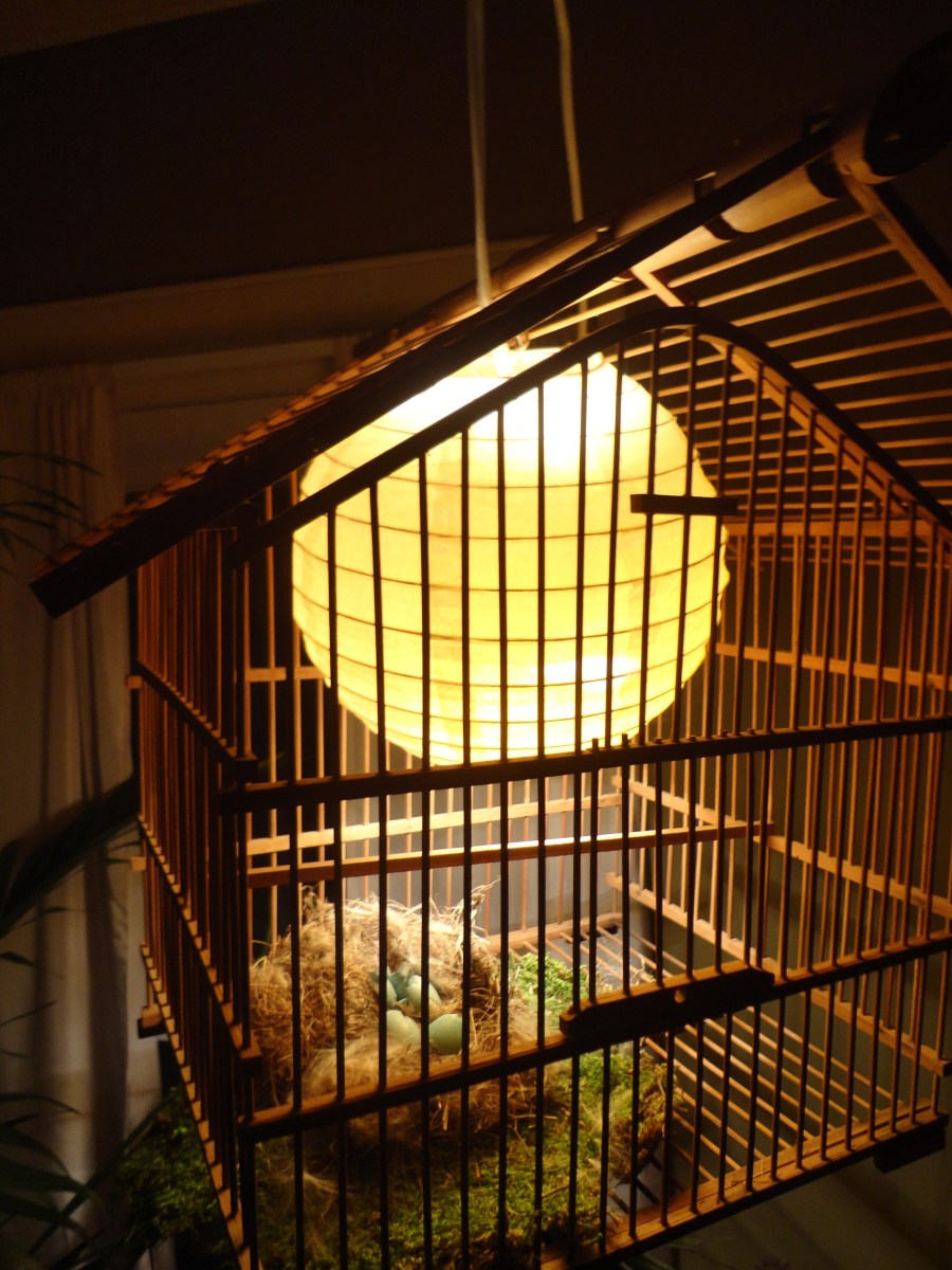Crafty Birdcage Light from Hell