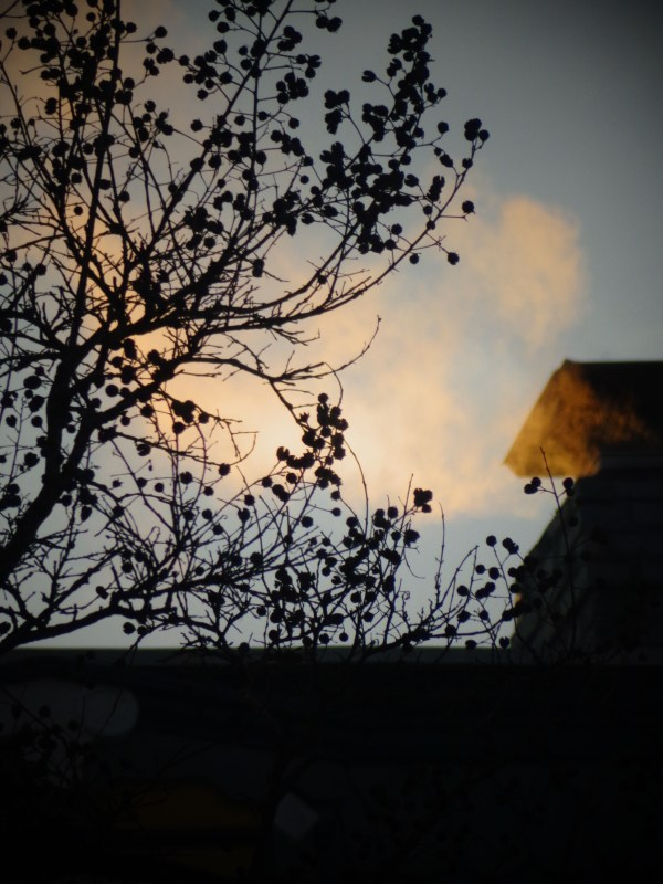 Smoke from my neighbor's chimney on Shalavee.com