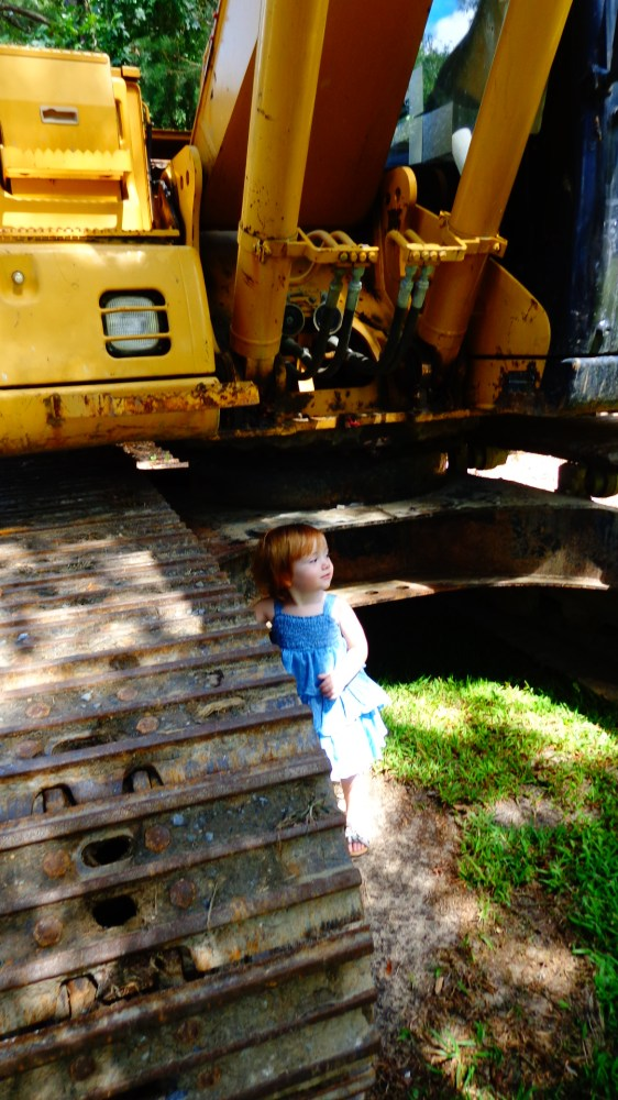 Fiona and the digger from Barbi Dream houses on Shalavee.com