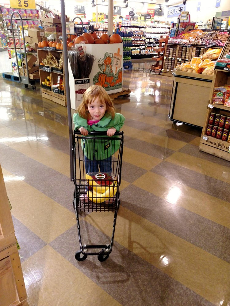 Fiona grocery shopping on Shalavee.com