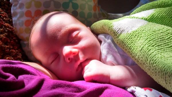 Baby Fiona on Shalavee.com