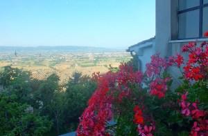 AssisiPilgrimage_MBenefiel_June15_8