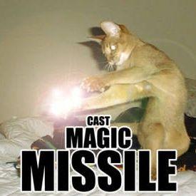 d&d meme cast magic missle cat