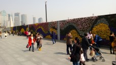 This is a wall planted with real flowers - the walkway for the Bund is on the top.